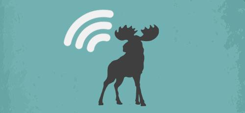 https://oostwestsl.com/wp-content/uploads/2021/01/news-moose.png